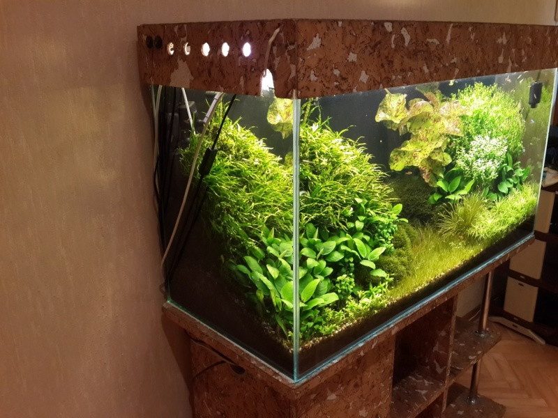 Удо в аквариум своими руками 66